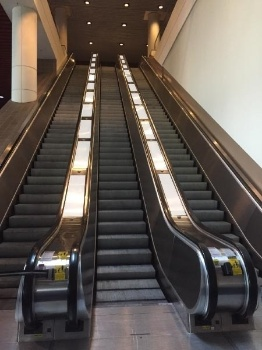 Picture of Escalator Cling - IE149